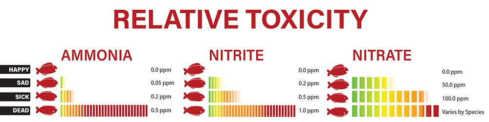 the aquarium nitrogen cycle